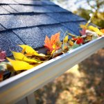 Home Maintenance Mistakes to Avoid This Fall | Bryan's Fuel Orangeville Shelburne Collingwood Caledon Owen Sound