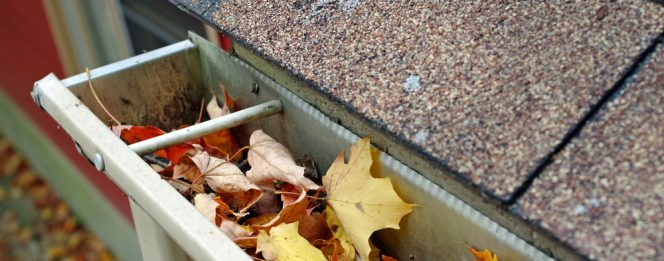 How Clogged Gutters Can Damage Your Home | Bryan's Fuel Orangeville